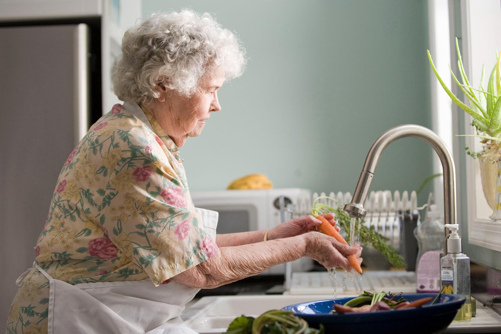 Relação entre desnutrição, funcionalidade e desempenho cognitivo em idosos